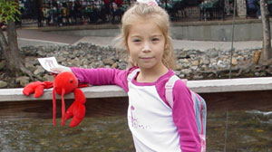 Ewelina Bledniak, 11, to Be Deported By Lawyers Error