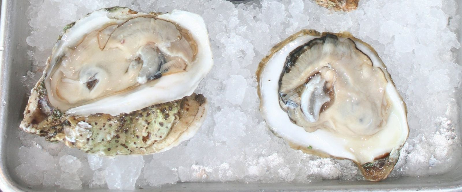 PHOTO: Toni Elliot found 50 pearls after she bit into an oyster while lunching at Pucketts Boat House in Franklin, Tenn. on April 2, 2015.