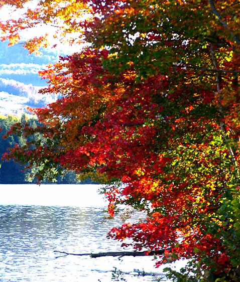 ht vermont nt 121001 blog When Autumn Comes to ...