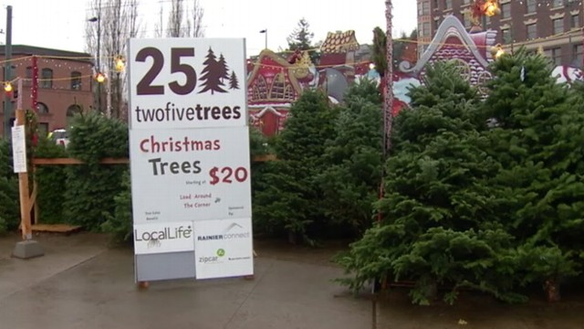 VIDEO: Washington state woman accused of posing as charity worker, selling trees and pocketing the cash.