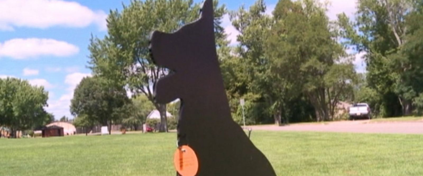 PHOTO: City leaders in Stevens Point, Wis., are using cardboard cutouts of dogs to keep flocks of geese away from their parks.