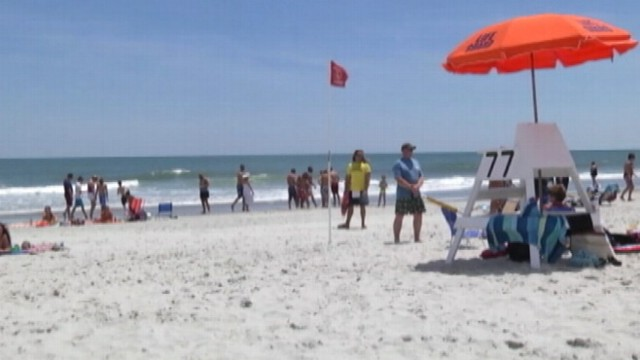 VIDEO: Four people were bitten in the ocean off the coast of South Carolina.