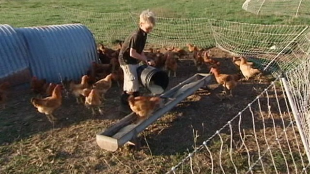 VIDEO: Research shows exposure to animals and other aspects of farm life are good for health.