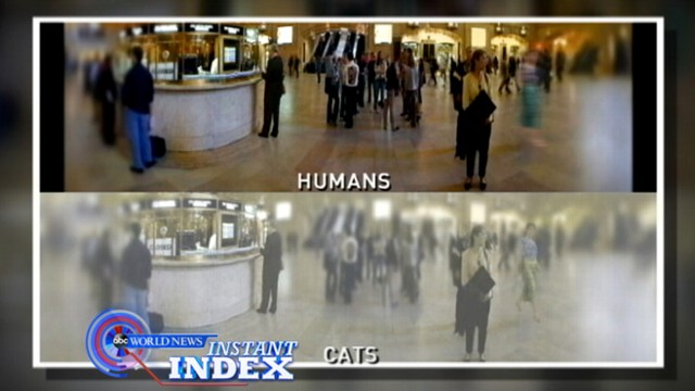 VIDEO: Diane Sawyer reveals the top stories people have been buzzing about this week.