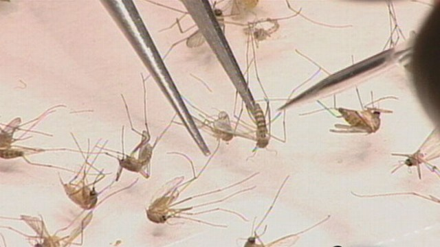 VIDEO: Hard hit Texas takes aggressive efforts to kill mosquitoes carrying the virus.
