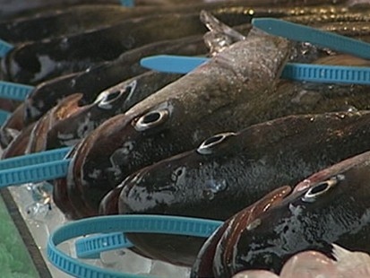 VIDEO: Ice in the Price of Frozen Seafood
