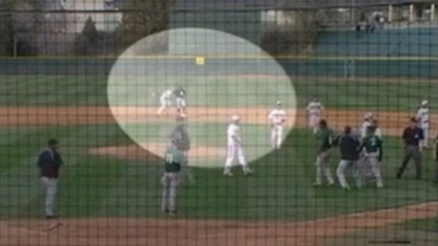 VIDEO: Left fielder was suspended for the season after punching rival teams player.