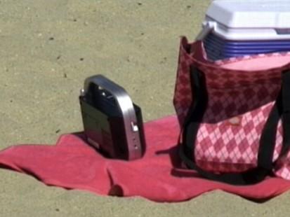 Beach Theft