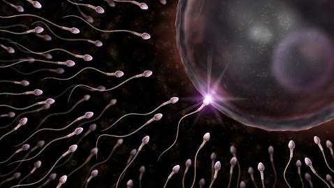 Arizona bank sperm
