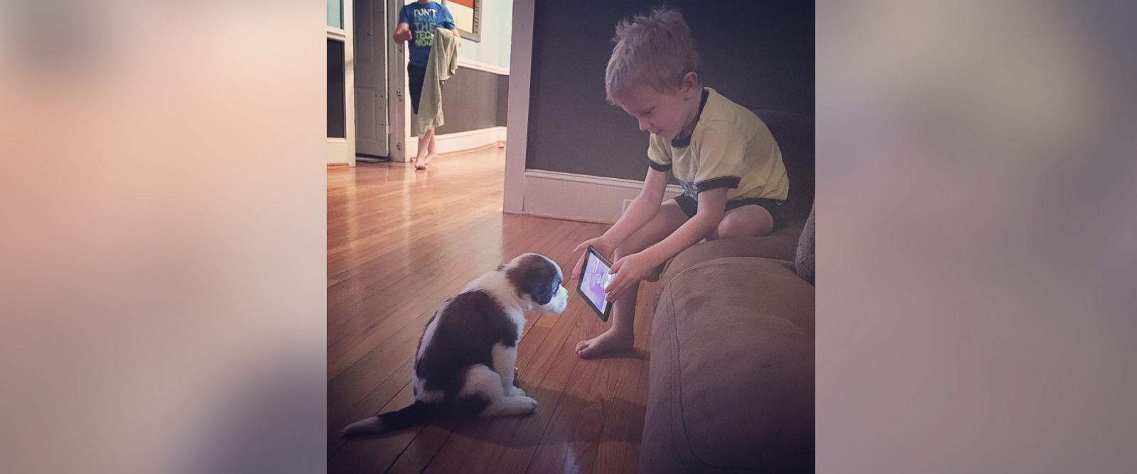 Boy teaching dog through video