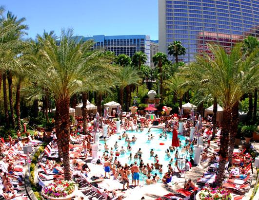 Best Las Vegas Topless And Party Pools Picture Photos