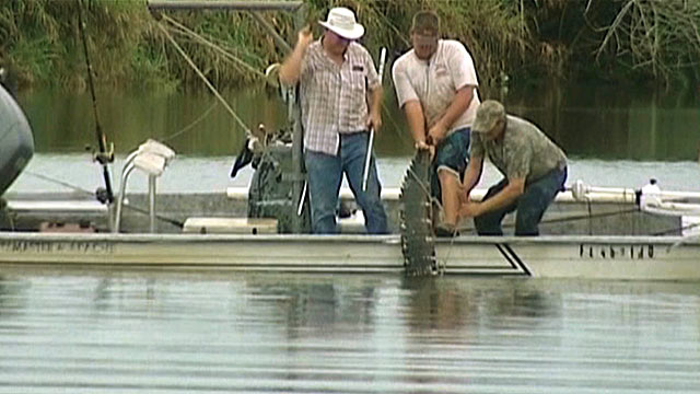 two florida teens attacked by alligator in less than a